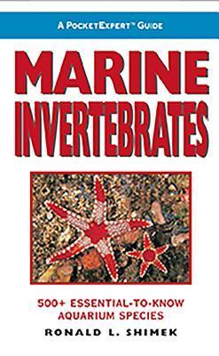 marine-invertebrates