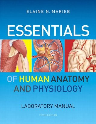 Essentials Of Human Anatomy Physiology Laboratory Manual By Elaine