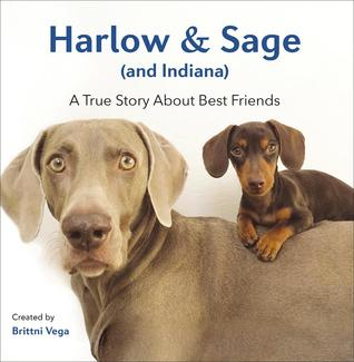 Harlow & Sage (and Indiana): A True Story About Best Friends por Brittni Vega