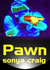 Pawn (Outbound, #4)