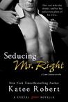 Seducing Mr. Right (Come Undone, #3.5)