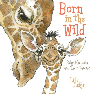 Image result for born in the wild baby mammals and their parents
