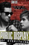Public Display of Everything by Cara Dee