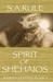 Spirit of Shehaios: Shaihen...