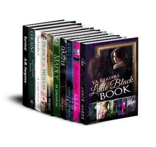 The YA Readers Little Black Book