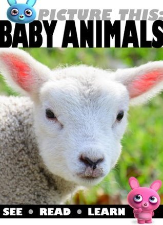 Baby Animals - Picture This! (42 Pages - Animal Babies Book of Pictures for Kids)