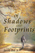 Of Shadows And Footprints