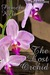 The Lost Orchid by Pamela Kelt
