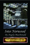 Into Norwood (Emperors and Exiles #1; Novels of Shannon #4)