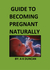 Guide To Becoming Pregnant ...