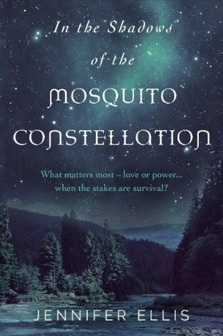In the Shadows of the Mosquito Constellation
