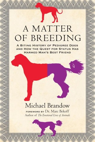 Descargar A matter of breeding: a biting history of pedigree dogs and how the quest for status has harmed man's best friend epub gratis online Michael Brandow