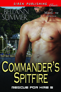 commander-s-spitfire