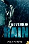November Rain (Fire and Rain, #4)