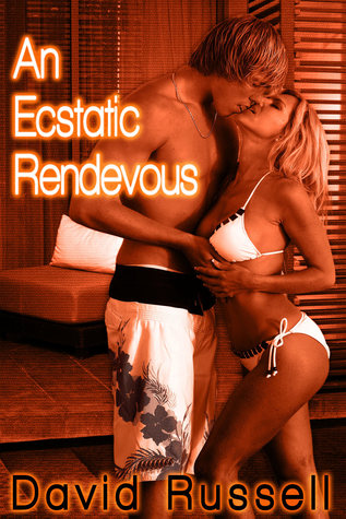 An Ecstatic Rendezvous EPUB