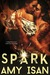 Spark (Ruin Outlaws MC, #2)