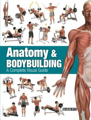 Anatomy  Bodybuilding: A Complete Visual Guide