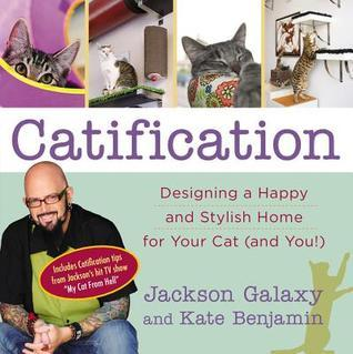 Catification: Designing a Happy and Stylish Home for Your Cat