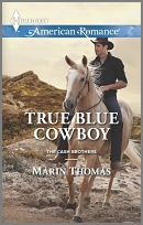 True Blue Cowboy (Cash Brothers, #5)