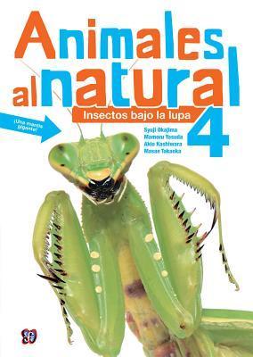 Animales Al Natural 4. Insectos Bajo La Lupa: Takaoka, Masae y Mamoru Yasuda por Masae Y Mamoru Yasuda Takaoka