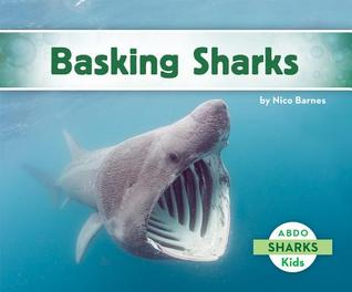 basking sharks by nico barnes