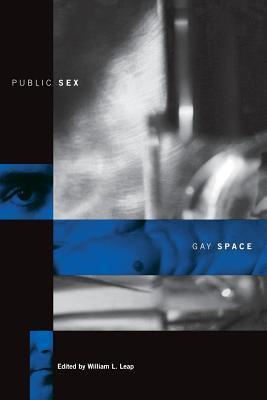 Public Sex/Gay Space