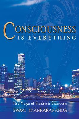 Consciousness Is Everything: The Yoga of Kashmir Shaivism
