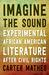 Imagine the Sound: Experime...