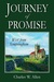 Journey of Promise by Charles W. Allen
