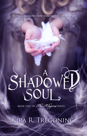 A Shadowed Soul