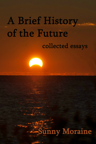 A Brief History of the Future: collected essays