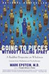 Going to Pieces Without Falling Apart by Mark Epstein