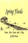 Spring Floods by Mari Pineo