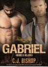 GABRIEL 3: Heroes and Villains (Phoenix Club, #12)