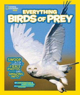 Everything Birds of Prey: Swoop in for Seriously Fierce Photos and Amazing Info