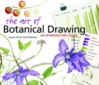 the-art-of-botanical-drawing-an-introductory-guide