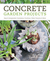 Concrete Garden Projects: Easy  Inexpensive Containers, Furniture, Water Features  More
