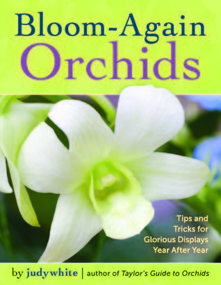 Bloom-Again Orchids: Tips and Tricks for Glorious Displays Year After Year