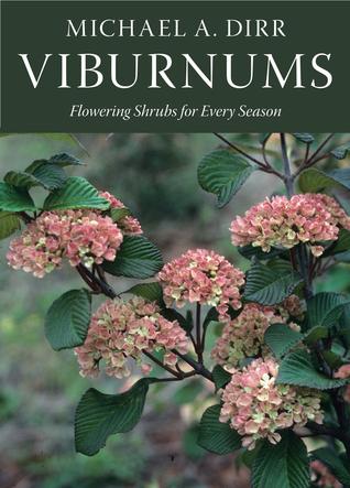 viburnums-flowering-shrubs-for-every-season