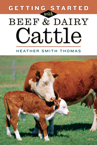 Getting Started with Beef Dairy Cattle