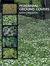 Perennial Ground Covers