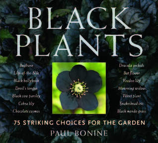 Black Plants by Paul Bonine