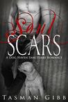 Soul Scars (Dog Haven Sanctuary Romance, #2)