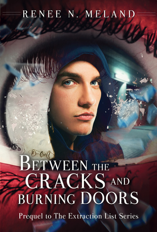 Ebook Between the Cracks and Burning Doors by Renee N. Meland DOC!