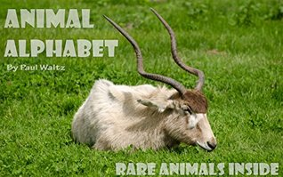 Animal Alphabet Book : Learn from Rare Animal ( ABC Photo Book : for Kids age 4 - 9 Years)