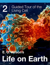 E.O. Wilson's Life on Earth Unit 2: Guided Tour of the Living Cell