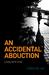 An Accidental Abduction: A Katy Byrd Novel