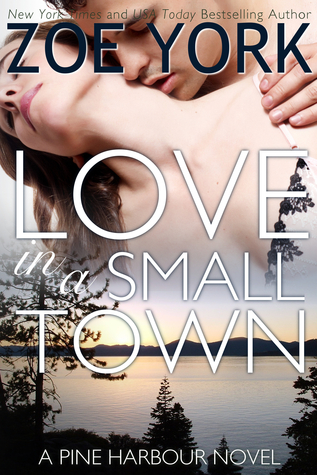 Love in a Small Town (Pine Harbour, #1)