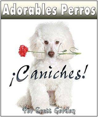 Adorables Perros ¡Los Caniches!