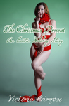 The Christmas Present: An Erotic Holiday Story